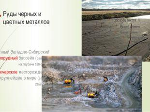 Руды черных и цветных металлов Крупный Западно-Сибирский железорудный бассейн