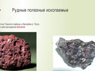 Рудные полезные ископаемые На востоке Томского района, в бассейне р. Татул, о