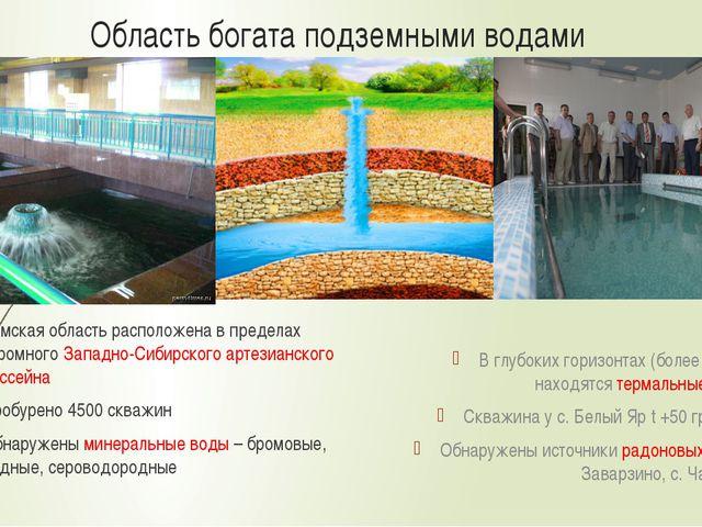 Область богата подземными водами Томская область расположена в пределах огром...