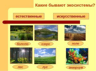 естественные искусственные озеро болото луг лес поле аквариум Какие бывают эк