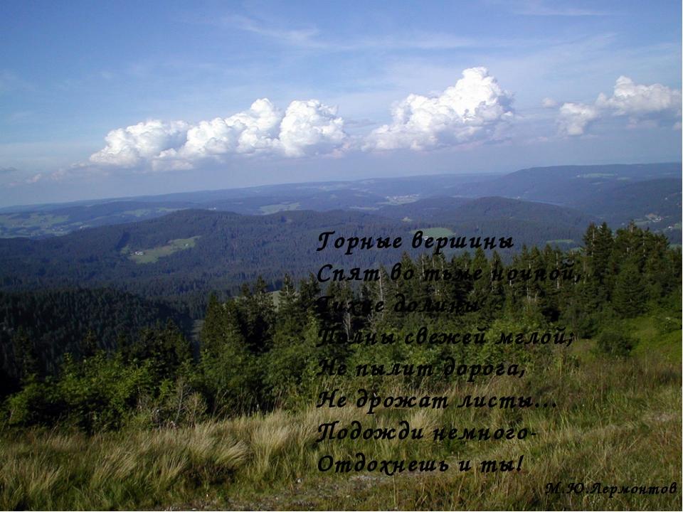 Горные вершины Спят во тьме ночной, Тихие долины Полны свежей мглой; Не пылит...
