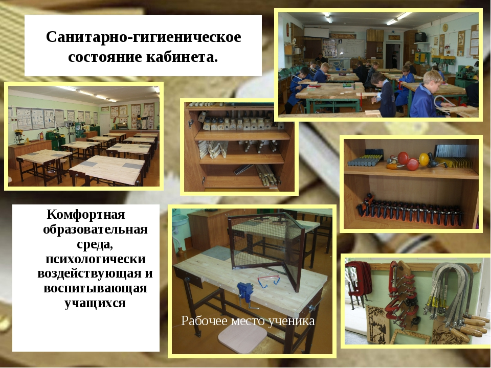 Санитарно-гигиеническое состояние кабинета. Комфортная образовательная среда,...