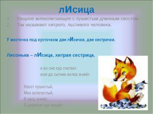 лисица Хищное млекопитающее с пушистым длинным хвостом. Так называют хитрого,