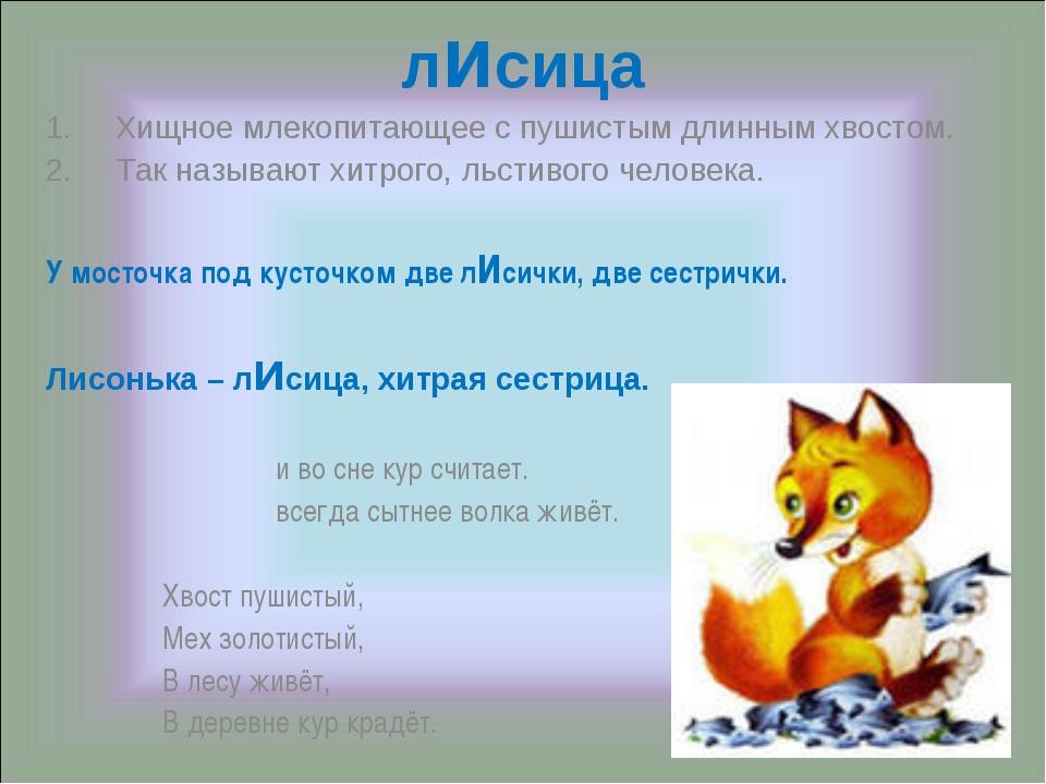 лисица Хищное млекопитающее с пушистым длинным хвостом. Так называют хитрого,...
