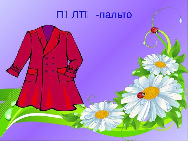 ПӘЛТӘ -пальто