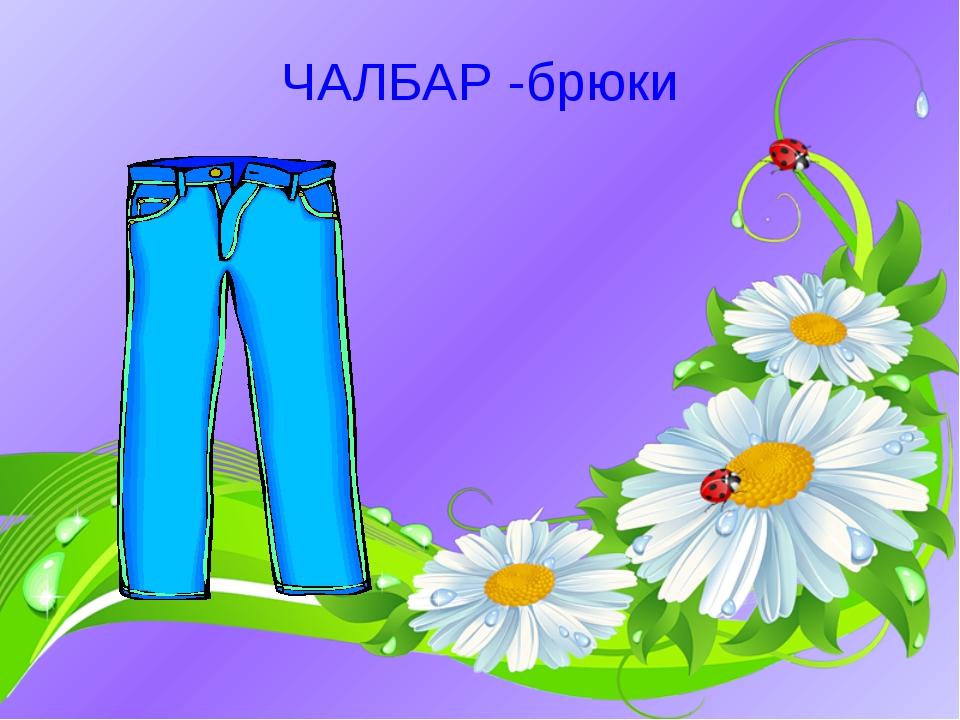 ЧАЛБАР -брюки