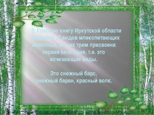 В Красную книгу Иркутской области занесено 17 видов млекопитающих животных,