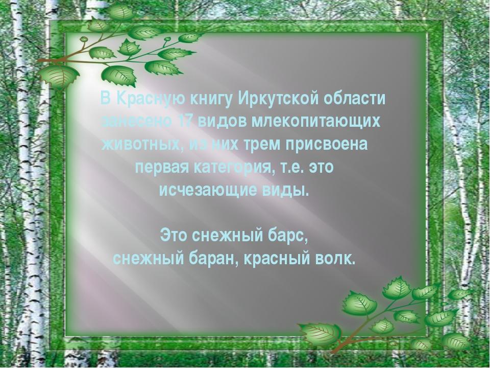 В Красную книгу Иркутской области занесено 17 видов млекопитающих животных,...
