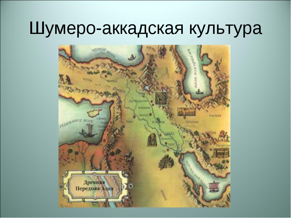Шумеро-аккадская культура