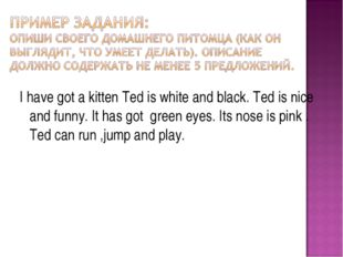 I have got a kitten Ted is white and black. Ted is nice and funny. It has got