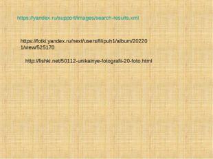 https://yandex.ru/support/images/search-results.xml https://fotki.yandex.ru/n
