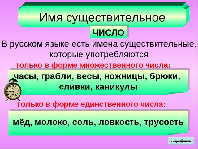 Имя существительное ЧИСЛО В русском языке есть имена существительные, которые...