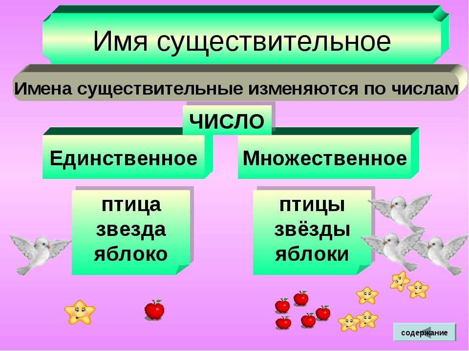 Знакомство С Множественным Числом Существительного На Русском Языке
