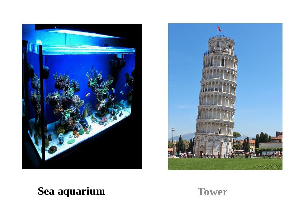 Sea aquarium Tower