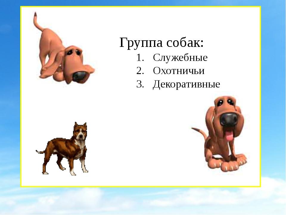 Группа собак: 1. Служебные 2. Охотничьи 3. Декоративные