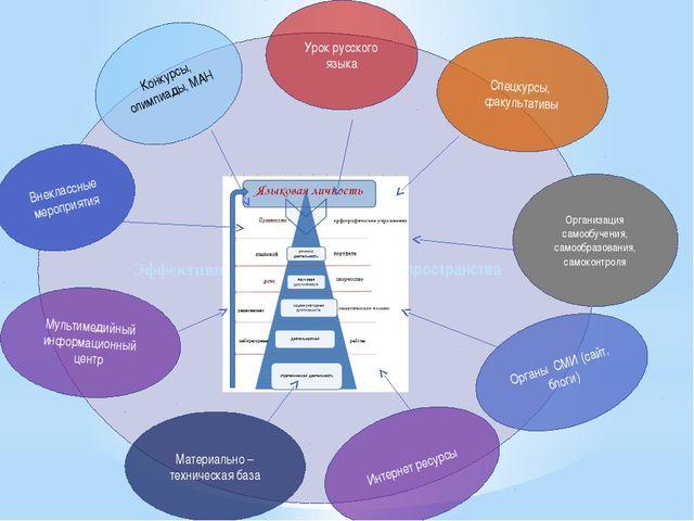 Эффективность образовательного пространства Спецкурсы, факультативы Организац...