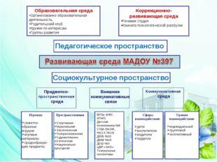 Образовательная среда Организованно-образовательная деятельность Родительский