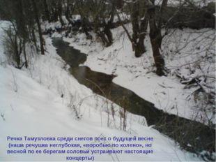 Речка Тамузловка среди снегов поет о будущей весне (наша речушка неглубокая,