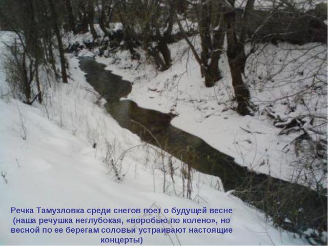 Речка Тамузловка среди снегов поет о будущей весне (наша речушка неглубокая,...