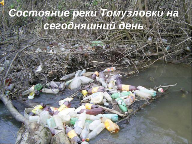 Состояние реки Томузловки на сегодняшний день