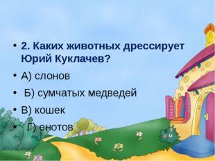 2. Каких животных дрессирует Юрий Куклачев? А) слонов Б) сумчатых медведей В
