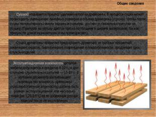 Общие сведения Сушкой называется процесс удаления влаги из древесины. В проце