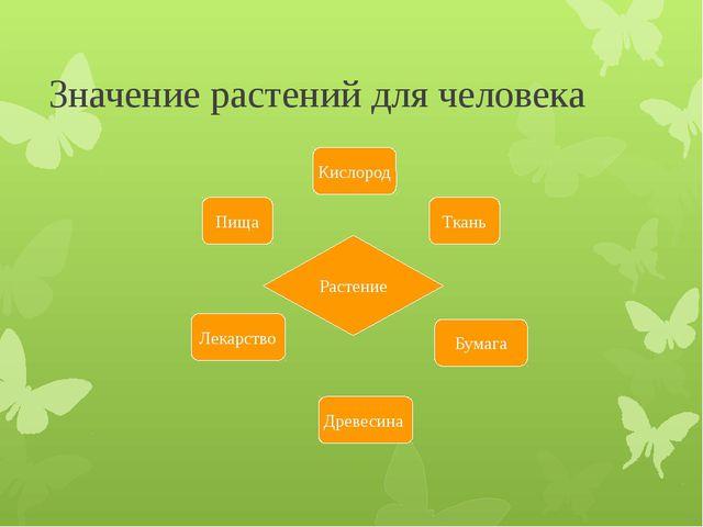 Значение растений для человека Растение Ткань Кислород Бумага Пища Лекарство...