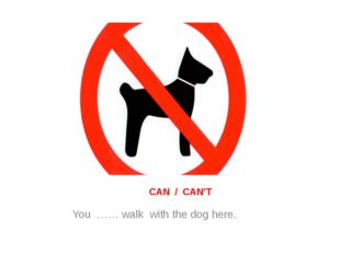 CAN / CAN'T You …… walk with the dog here.