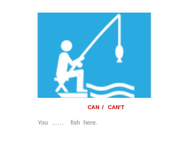 CAN / CAN'T You …… fish here.
