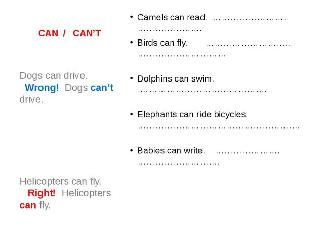 CAN / CAN'T Camels can read. ……………………. ………………….                  Birds can fl...
