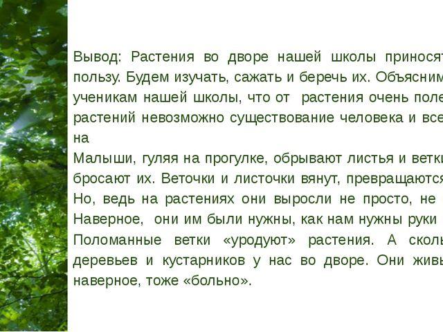 Вывод: Растения во дворе нашей школы приносят только пользу. Будем изучать, с...