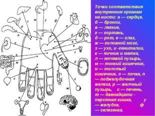 Точки соответствия внутренним органам на кисти: а — сердце, б — бронхи, в — л