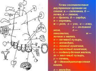 Точки соответствия внутренним органам на стопе: а — селезенка, б — почка, в