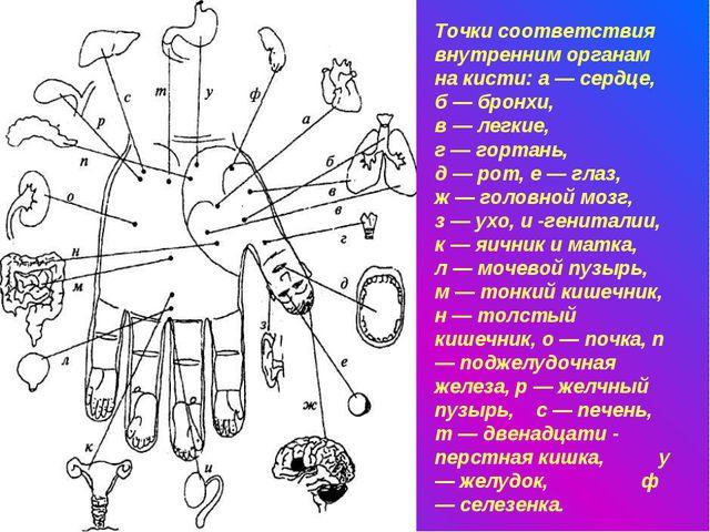 Точки соответствия внутренним органам на кисти: а — сердце, б — бронхи, в — л...