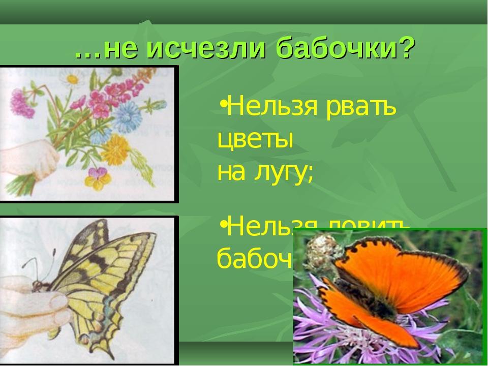 …не исчезли бабочки? Нельзя рвать цветы на лугу; Нельзя ловить бабочек…