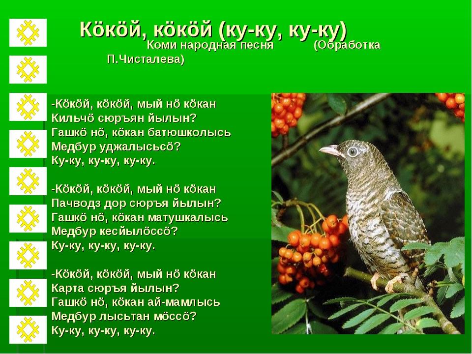 Кöкöй, кöкöй (ку-ку, ку-ку) Коми народная песня (Обработка П.Чисталева) -Кöкö...