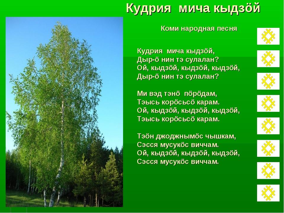 Кудрия мича кыдзöй Коми народная песня Кудрия мича кыдзöй, Дыр-ö нин тэ сулал...