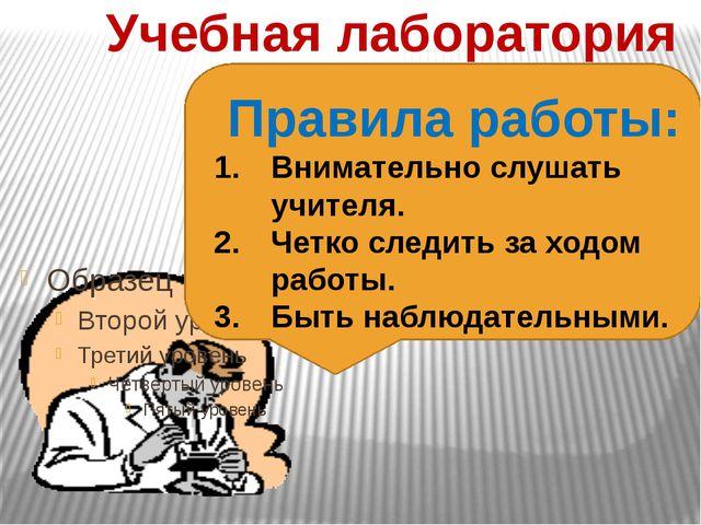 Учебная лаборатория Правила работы: Внимательно слушать учителя. Четко следит...
