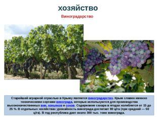Старейшей аграрной отраслью в Крыму являетсявиноградарство. Крым славен имен