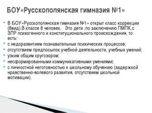 В БОУ»Русскополянская гимназия №1» открыт класс коррекции (8вид).В классе 8 ч