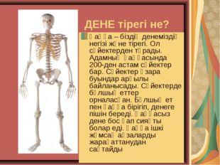 ДЕНЕ тірегі не? Қаңқа – біздің денеміздің негізі және тірегі. Ол сүйектерден