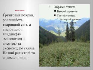 Висотна поясність Ґрунтовий покрив, рослинність, тваринний світ, а відповідн