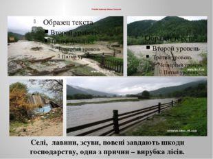 Стихійні природні явища і процеси. Селі, лавини, зсуви, повені завдають шкод