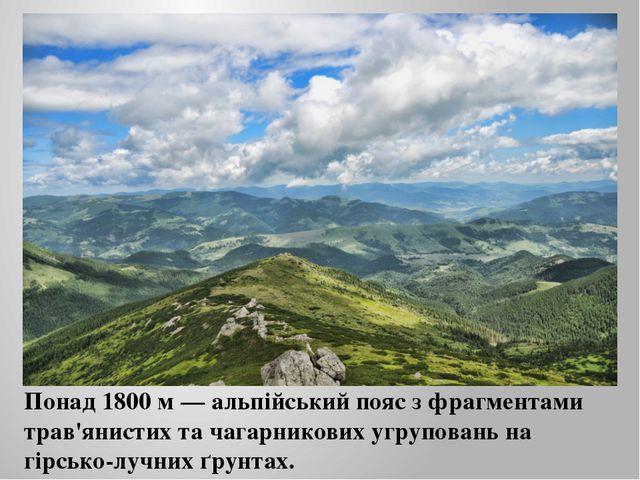 Понад 1800 м — альпійський пояс з фрагментами трав'янистих та чагарникових уг...