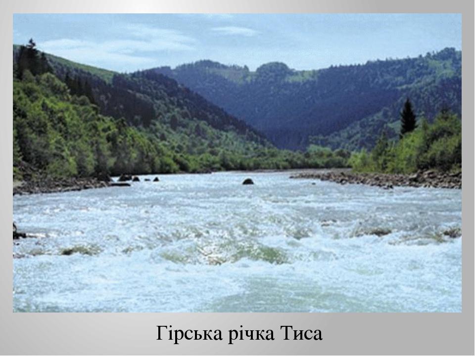 Гірська річка Тиса