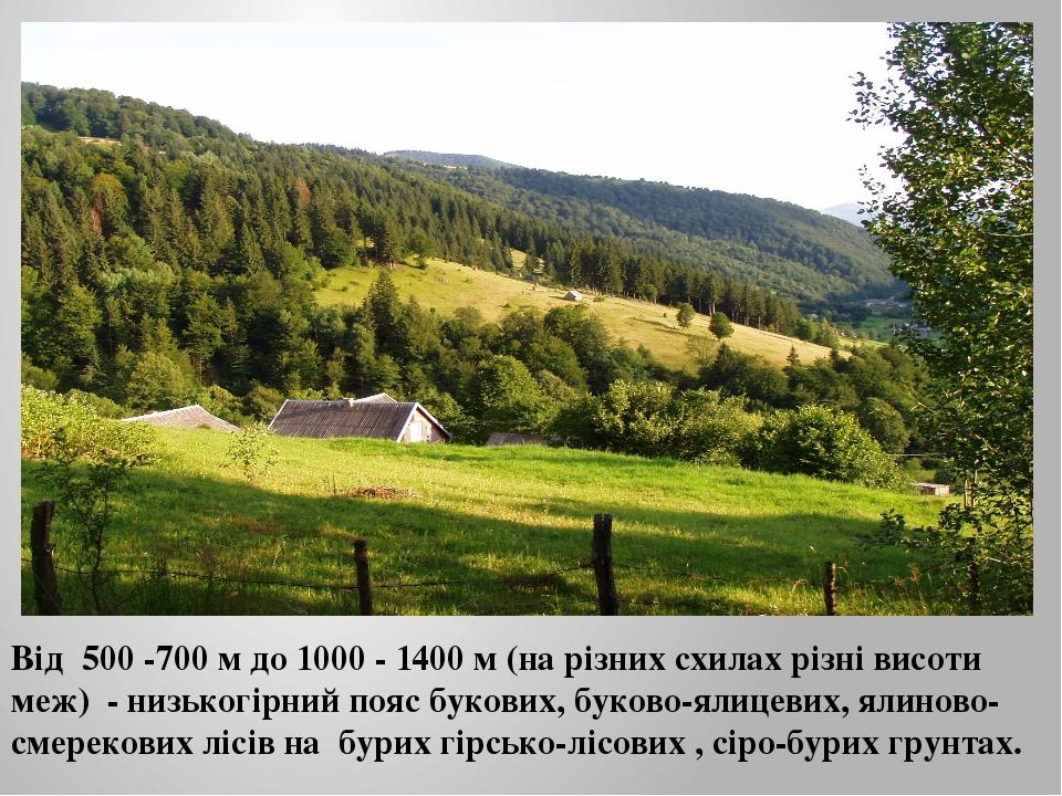 Від 500 -700 м до 1000 - 1400 м (на різних схилах різні висоти меж) - низьког...