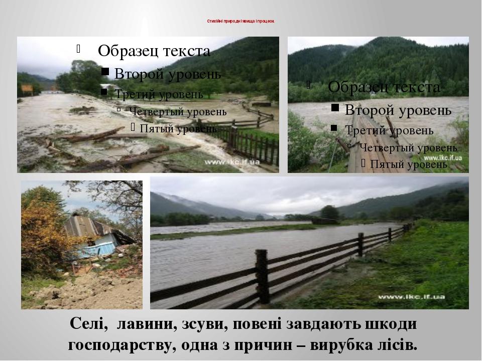 Стихійні природні явища і процеси. Селі, лавини, зсуви, повені завдають шкод...