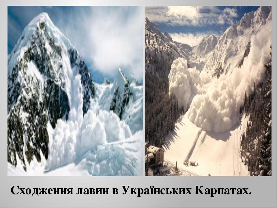 Сходження лавин в Українських Карпатах.