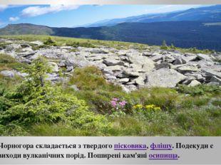 Чорногора складається з твердогопісковика,флішу. Подекуди є виходи вулканіч