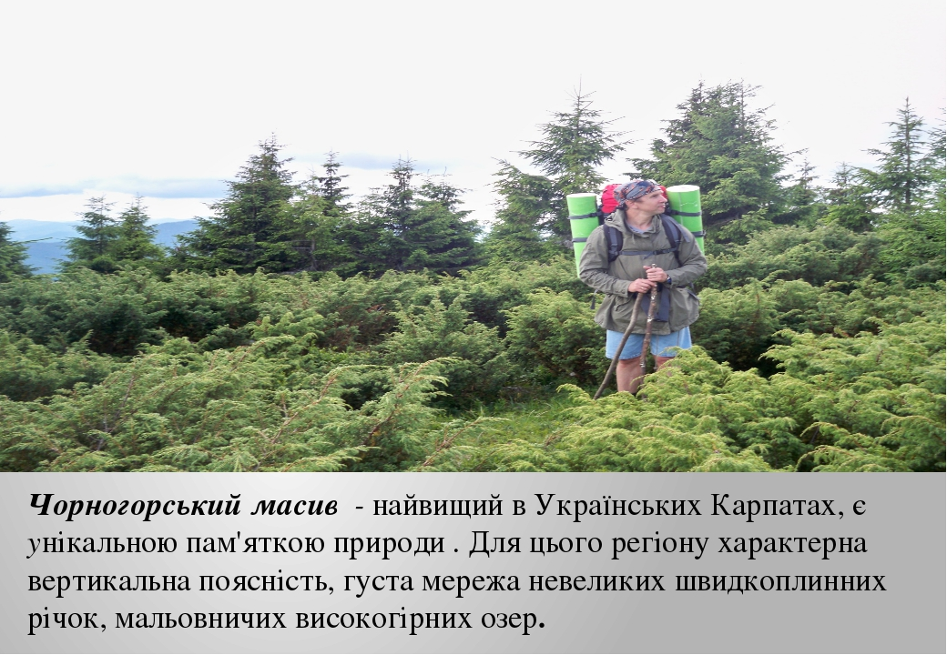 Чорногорський масив - найвищий в Українських Карпатах, є унікальною пам'яткою...